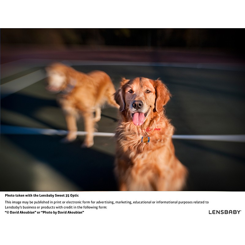 Lensbaby Composer Pro Sony met Double Glass Optic