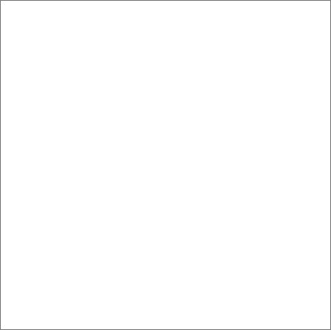 Savage Achtergrond Rol Super White 2.75m x 11m