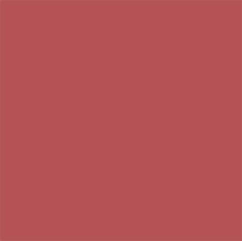 Savage Achtergrond Rol Primary Red 2.75m x 11m