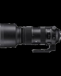 Nieuw! SIGMA 60-600mm F4.5-6.3 DG OS HSM Sports voor Nikon